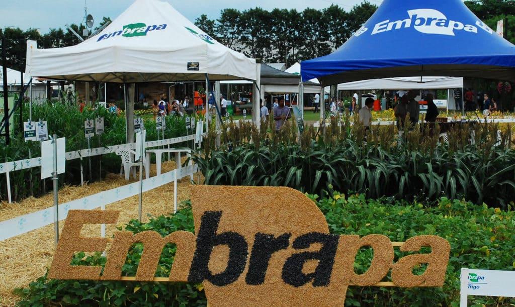 A cada R$ 1,00 aplicado pela Embrapa em 2017,  R$ 11,06 foram devolvidos para a sociedade