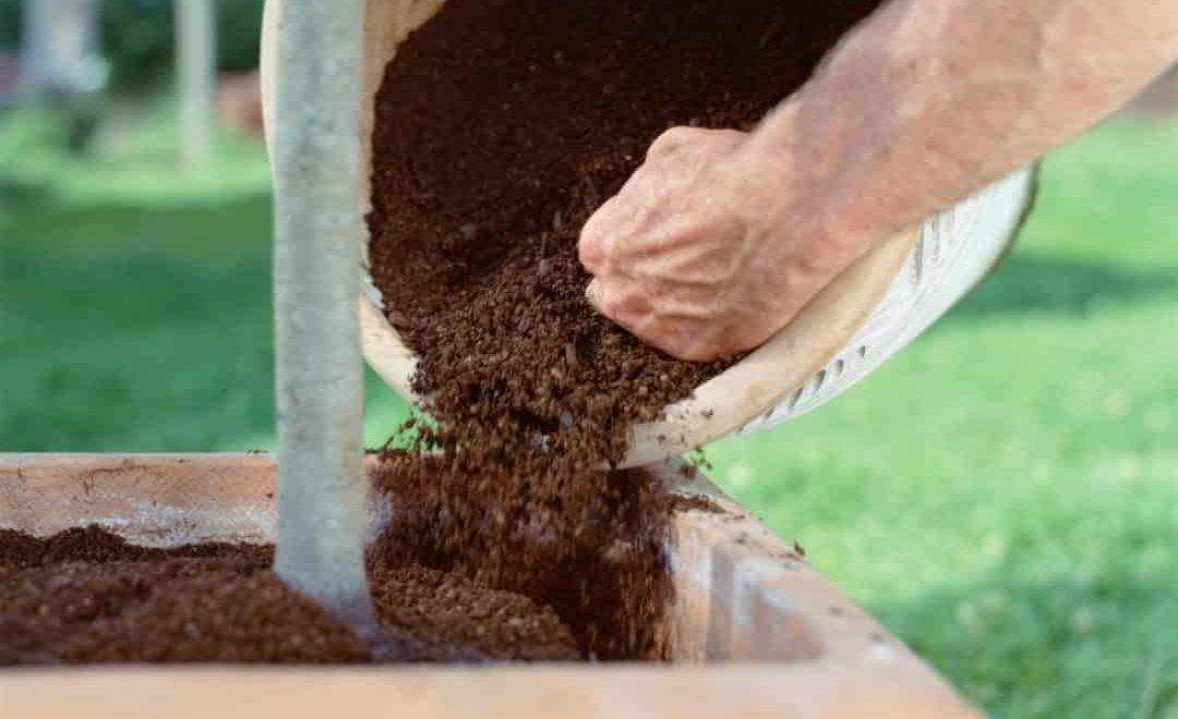 Homem jogando terra fértil em vaso