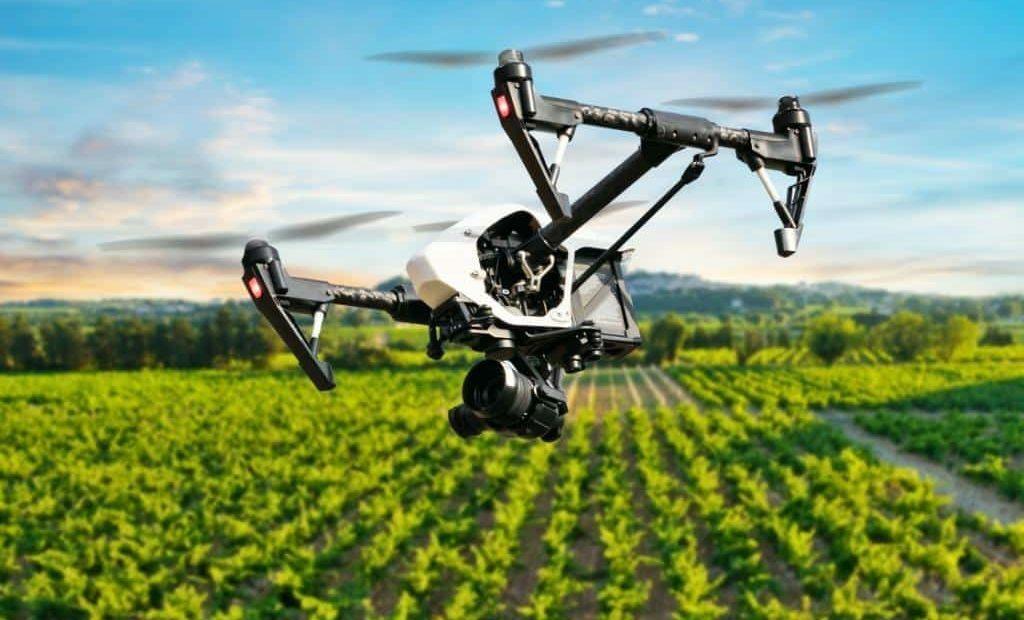 Drone voando acima de uma lavoura
