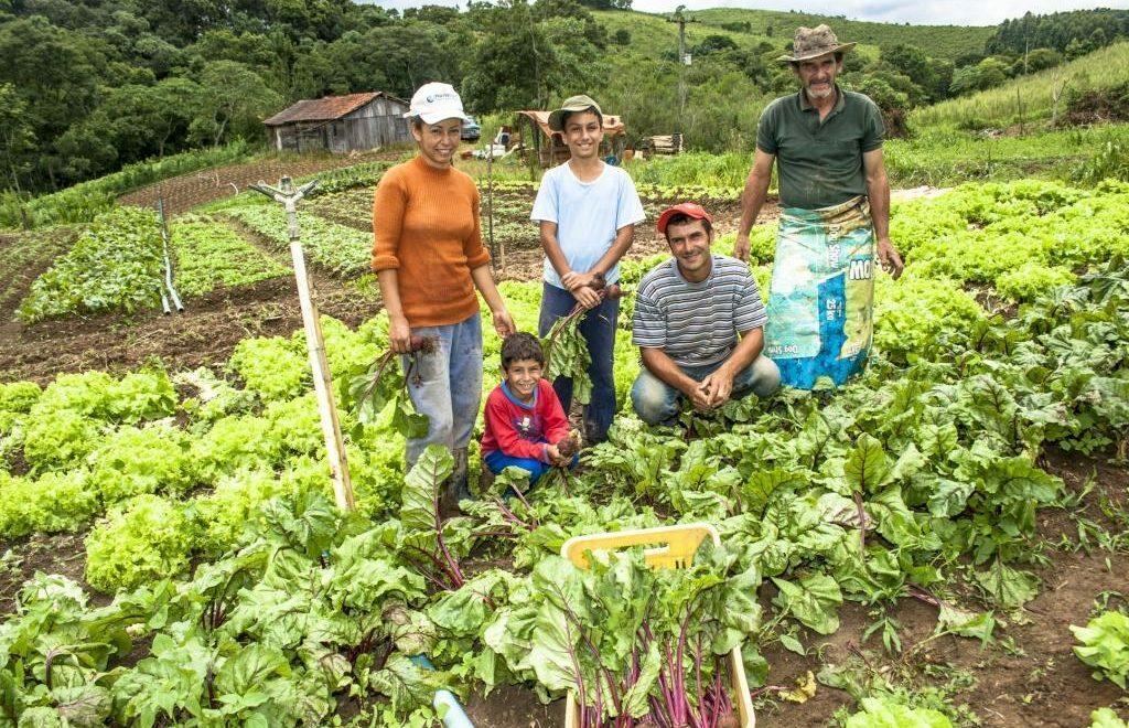 Agricultura Familiar: por que ela é importante para o nosso país?