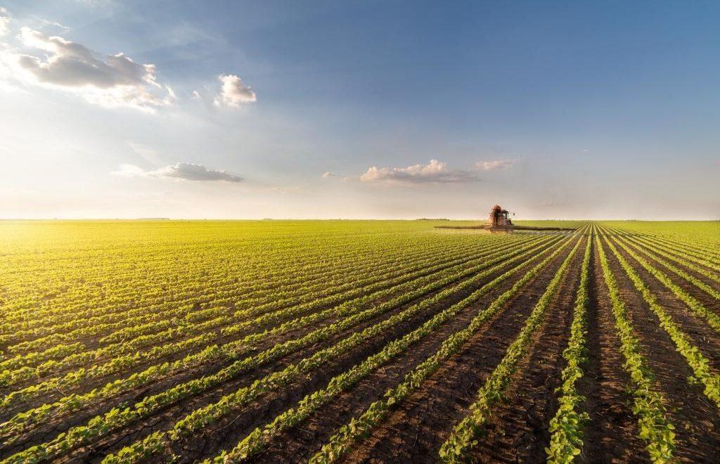 Segundo o CNA a agricultura brasileira pode bater recordes em 2020