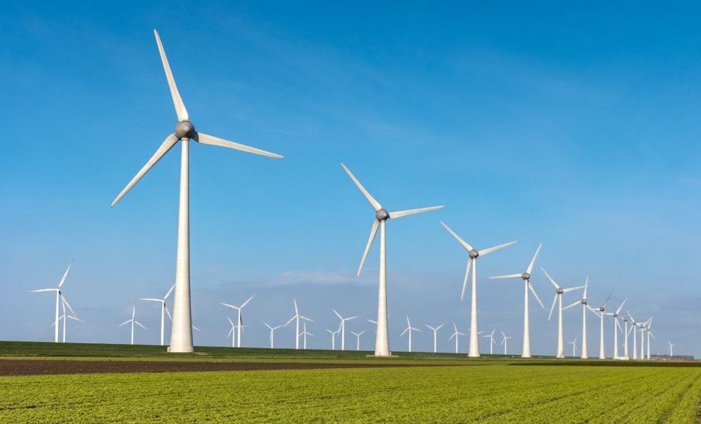 Fazenda consorciada com cultura e energia eólica