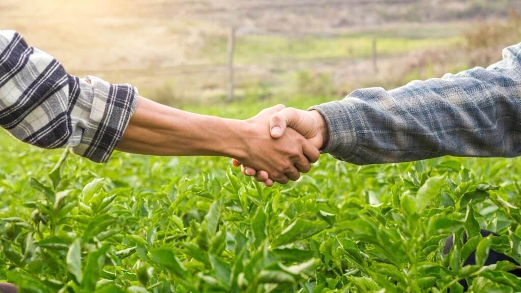 Agricultores dando as mãos celebrando contrato de arrendamento de fazenda