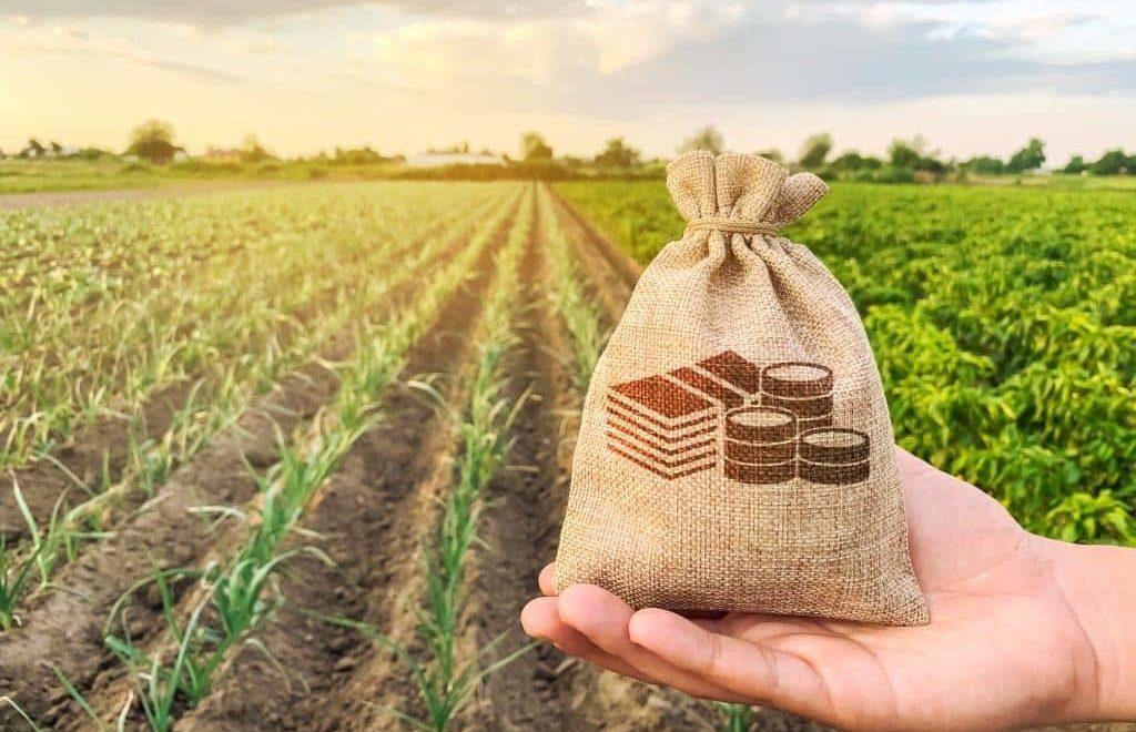 Entenda como funciona o arrendamento de fazendas