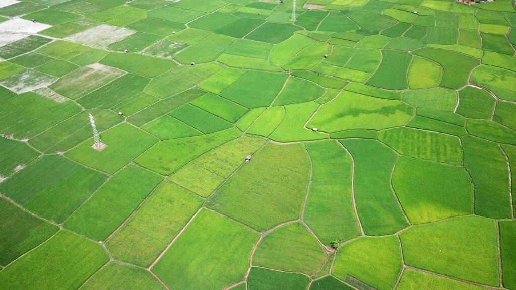 O que é georreferenciamento de fazendas?