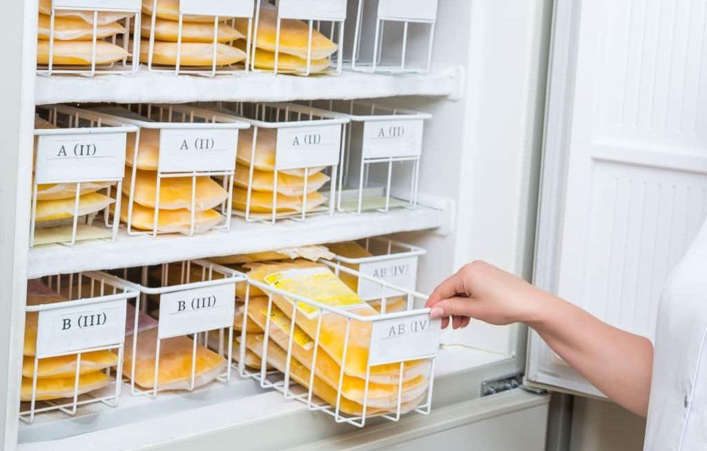 Várias bandejas com plasma em refrigerador