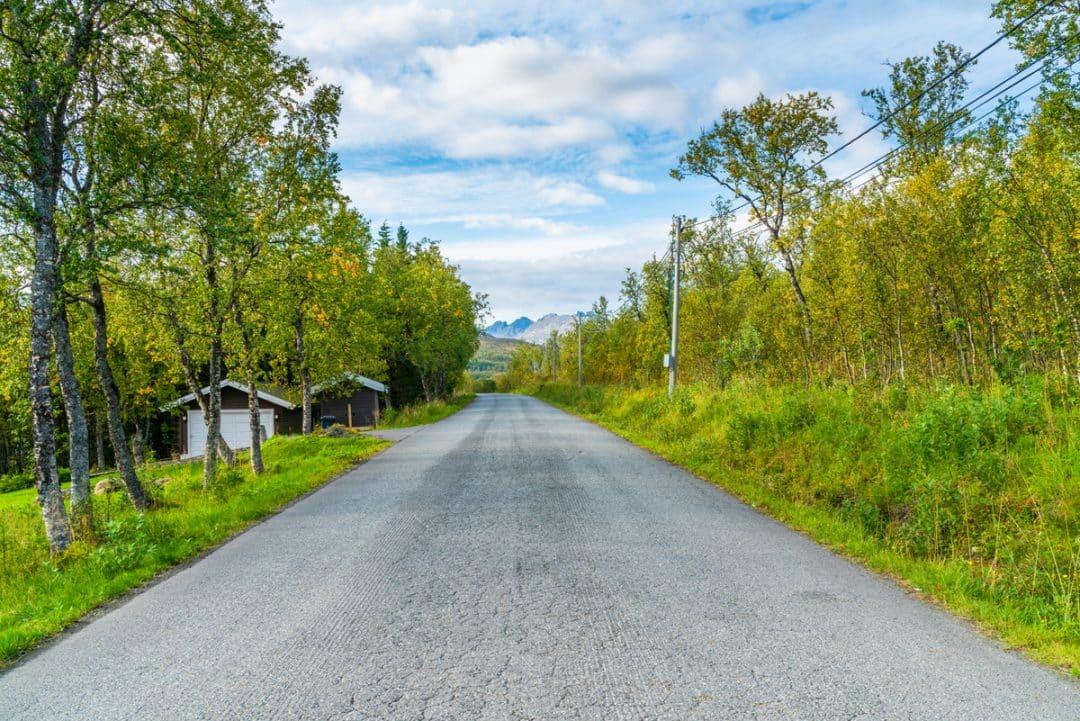 Estrada asfaltada de acesso à fazenda