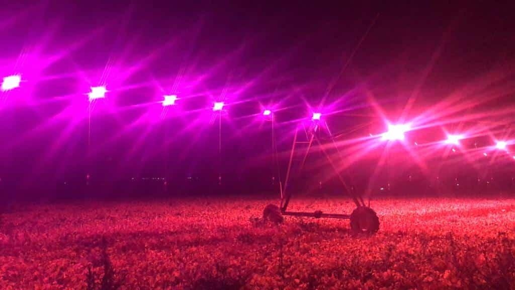 Luzes direcionadas para a lavoura