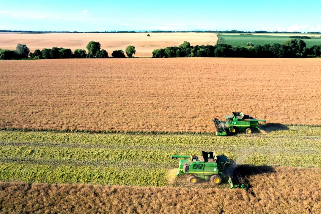 Máquinas fazendo a colheita lado a lado