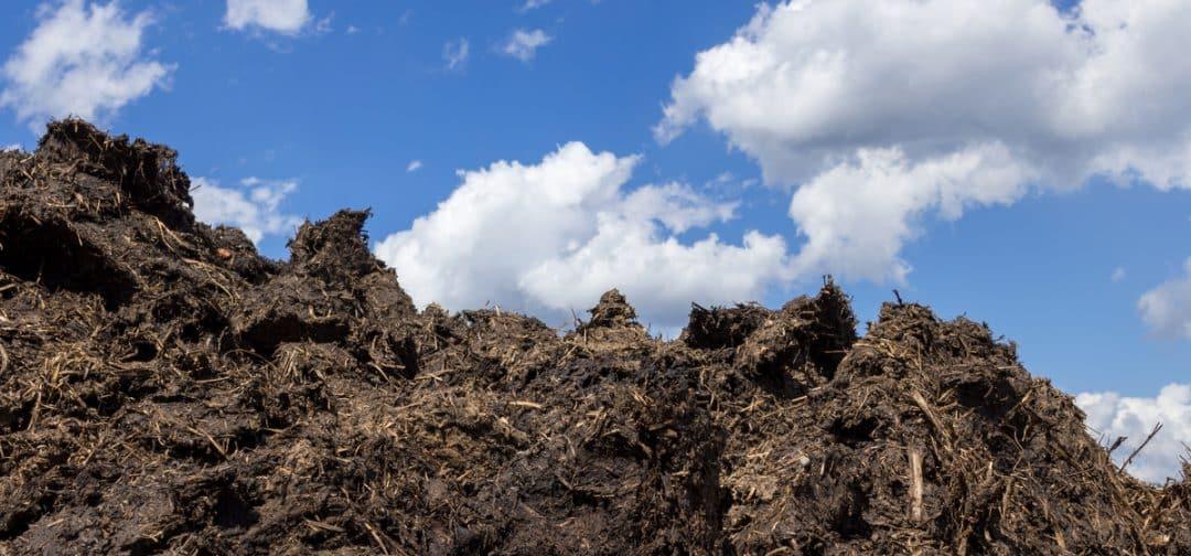 Monte de esterco a céu aberto