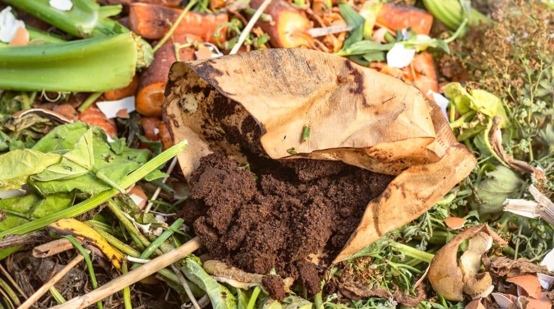 Borra de café no solo junto com restos de alimentos