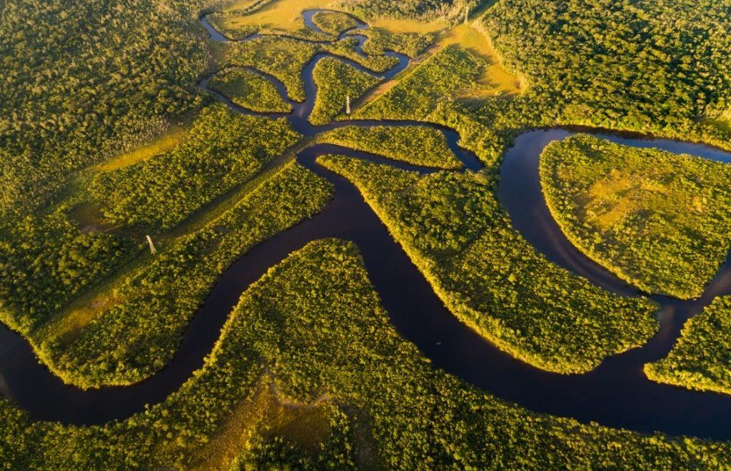 Amazônia não está em chamas: vídeo mostra para o mundo a preservação da floresta