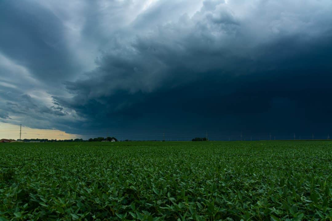 Chuva ameaçando plantio agrícola
