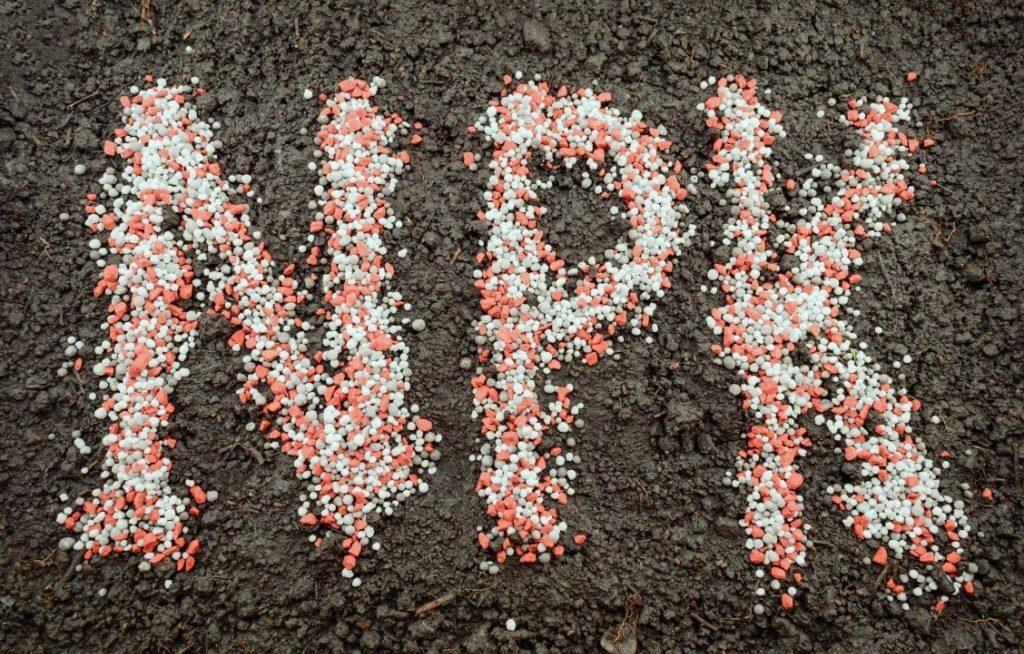 NPK no solo desenhando as letras do adubo