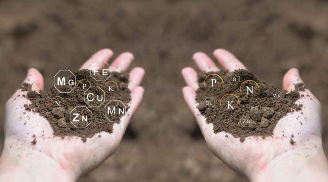 Homem com porções de solo nas mãos