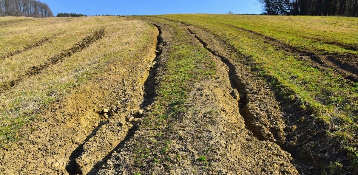 Erosão em sulcos numa propriedade rural