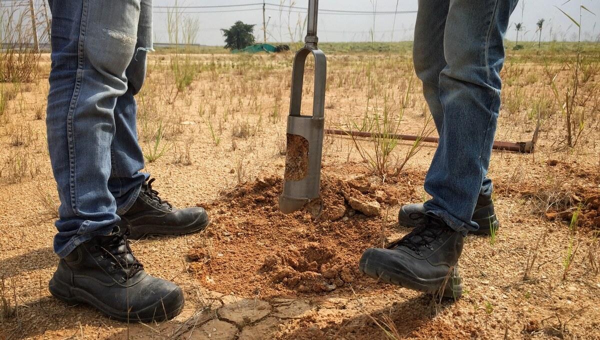 Técnicos retirando amostras do solo