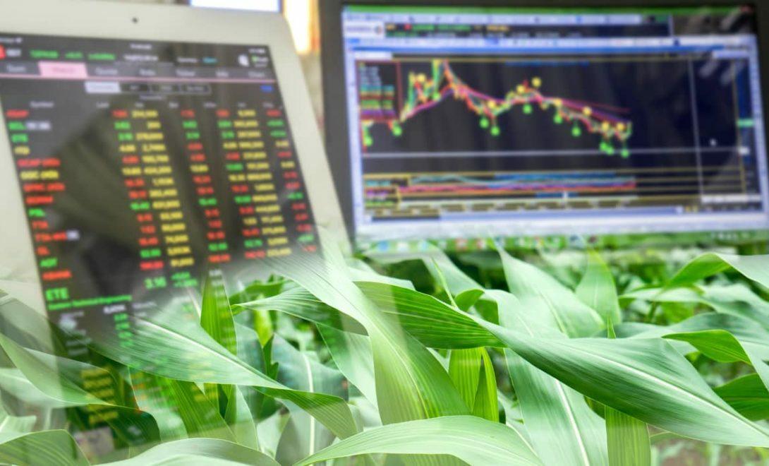 O que são commodities agrícolas e os motivos para investir