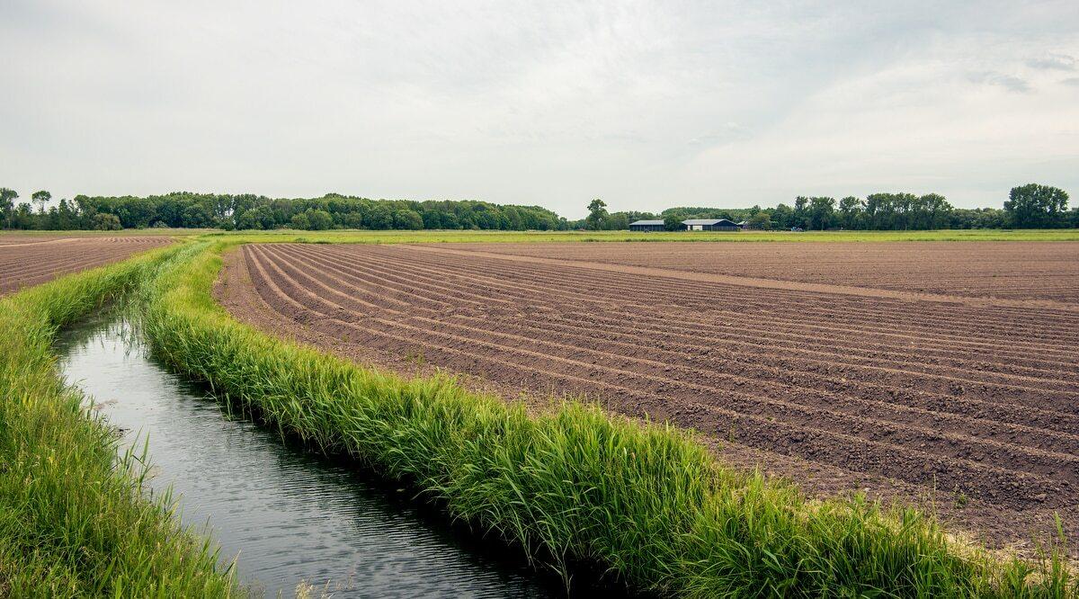 Canal de drenagem ao lado de uma área preprada para plantio