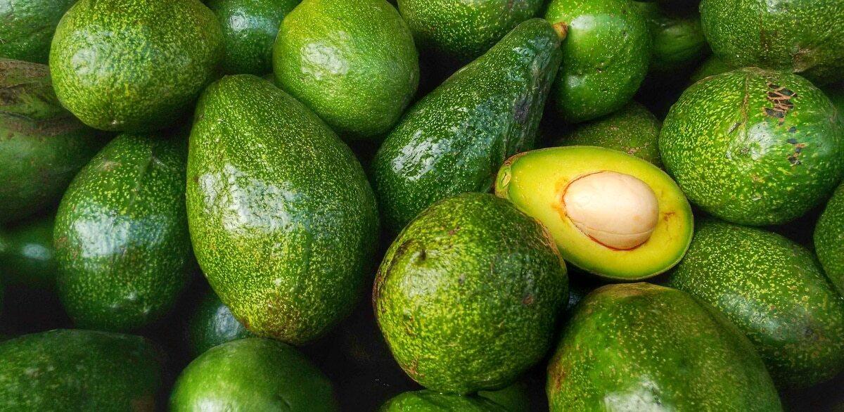 Frutos de abacate, com um deles cortado ao meio