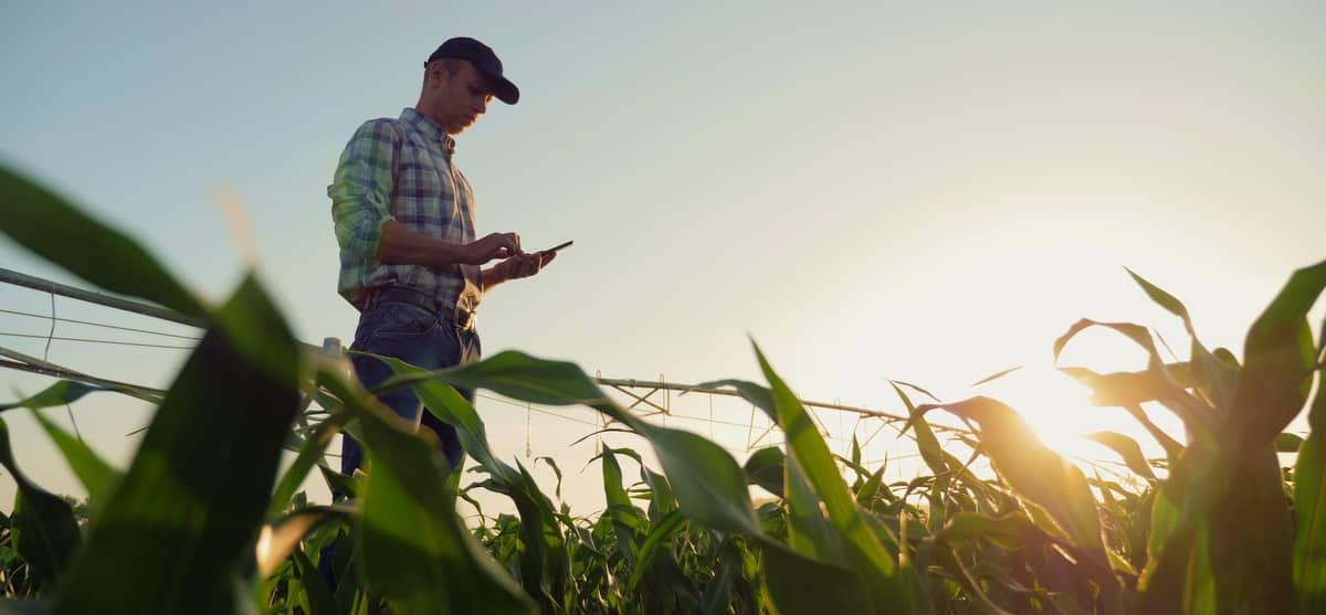 Produtor rural  usando celular agricultura de precisão