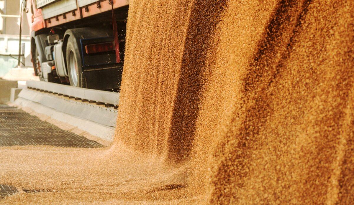 Caminhão descarrega grãos em silo