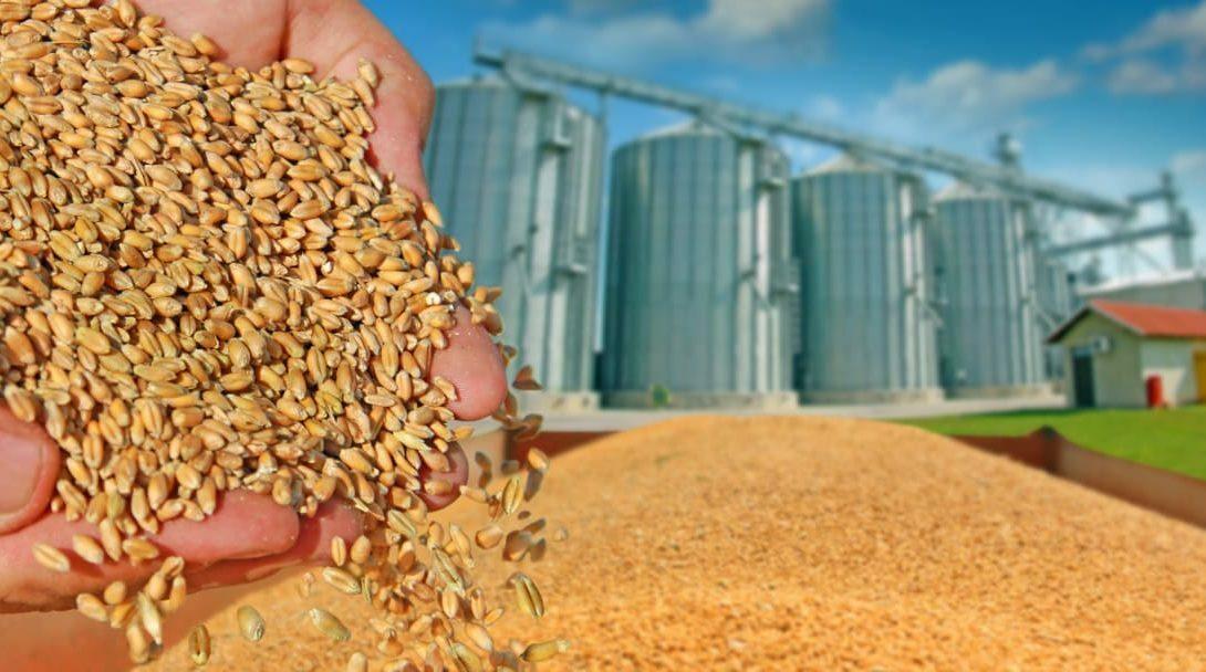 Silo de grãos: 7 perguntas e respostas essenciais