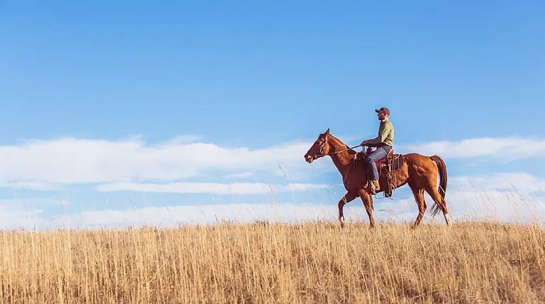 Homem a cavalo no pasto