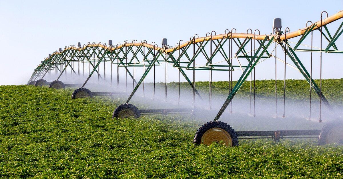 Área de plantio com sistema de irrigação