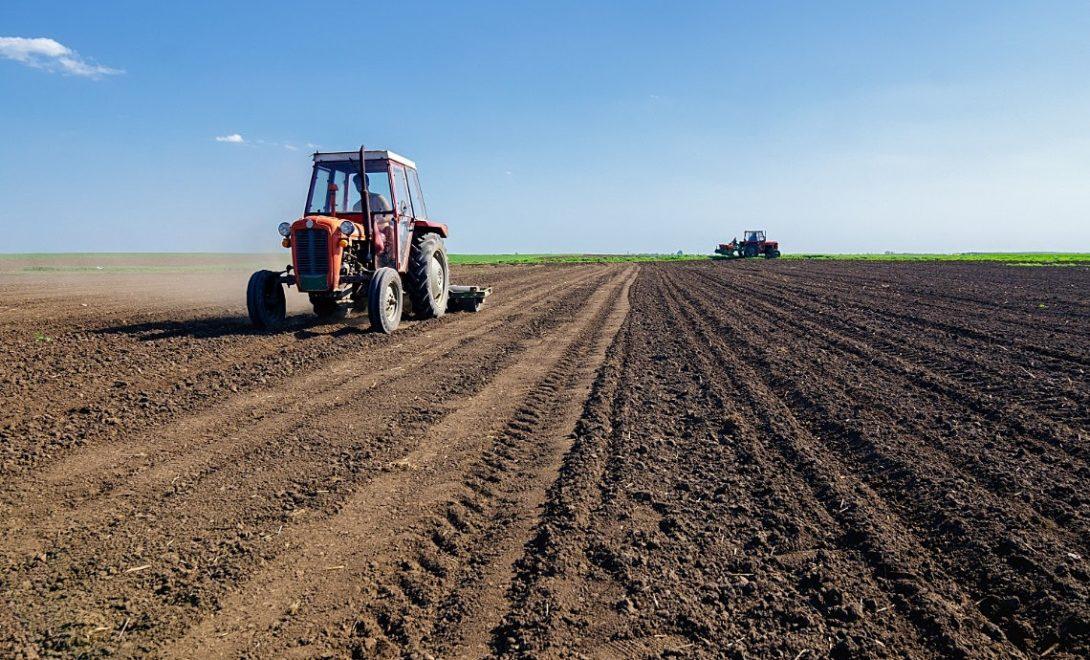 Manejo do solo: como fazer e o que se deve evitar