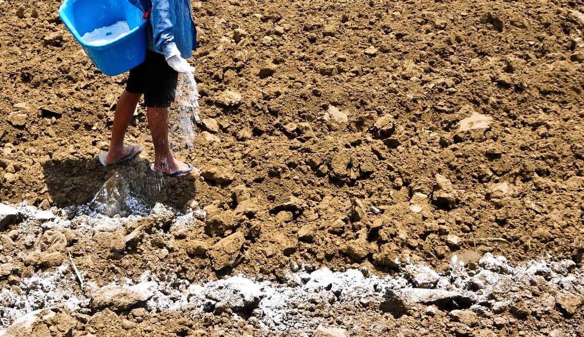 Homem realizando o trabalho de calagem e gessagem do solo.