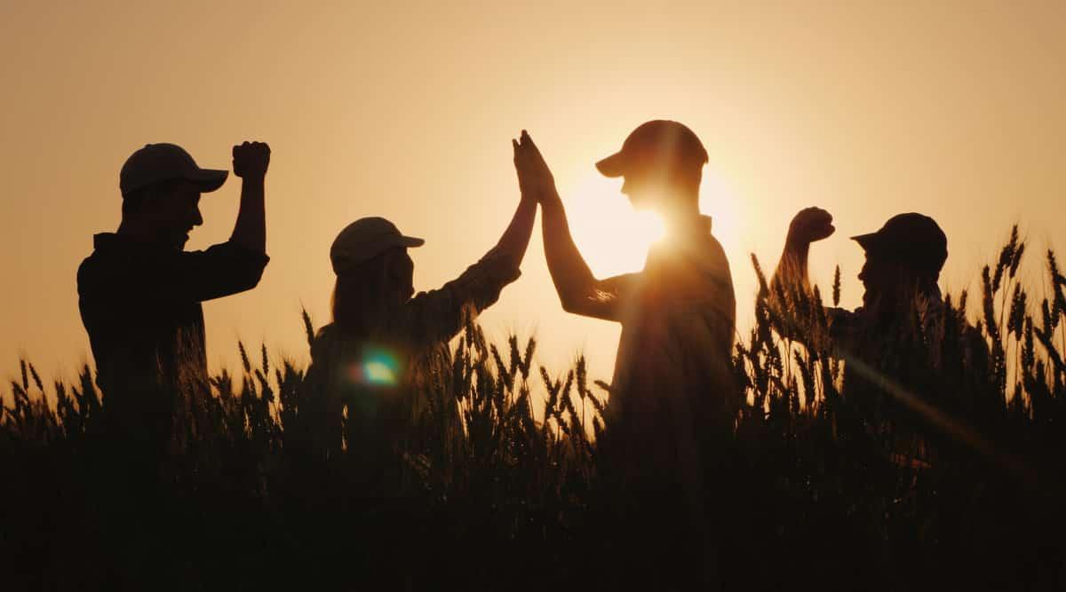 Agricultores comemoram o sucesso de uma negociação no campo.