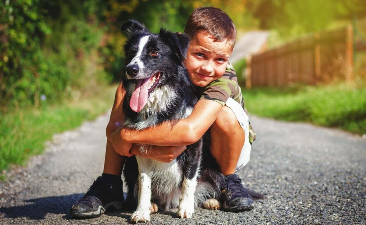 Criança abraçando um cachorro border collie