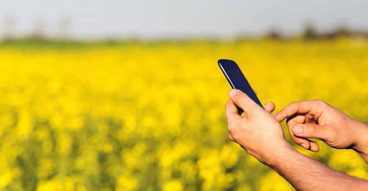 Homem usando celular no campo