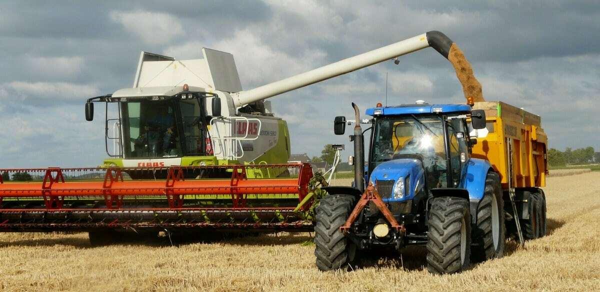 Agronegócio com a colheita de grãos