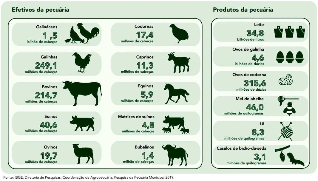 Arte do IBGE mostrando o plantel de codornas e outros animais
