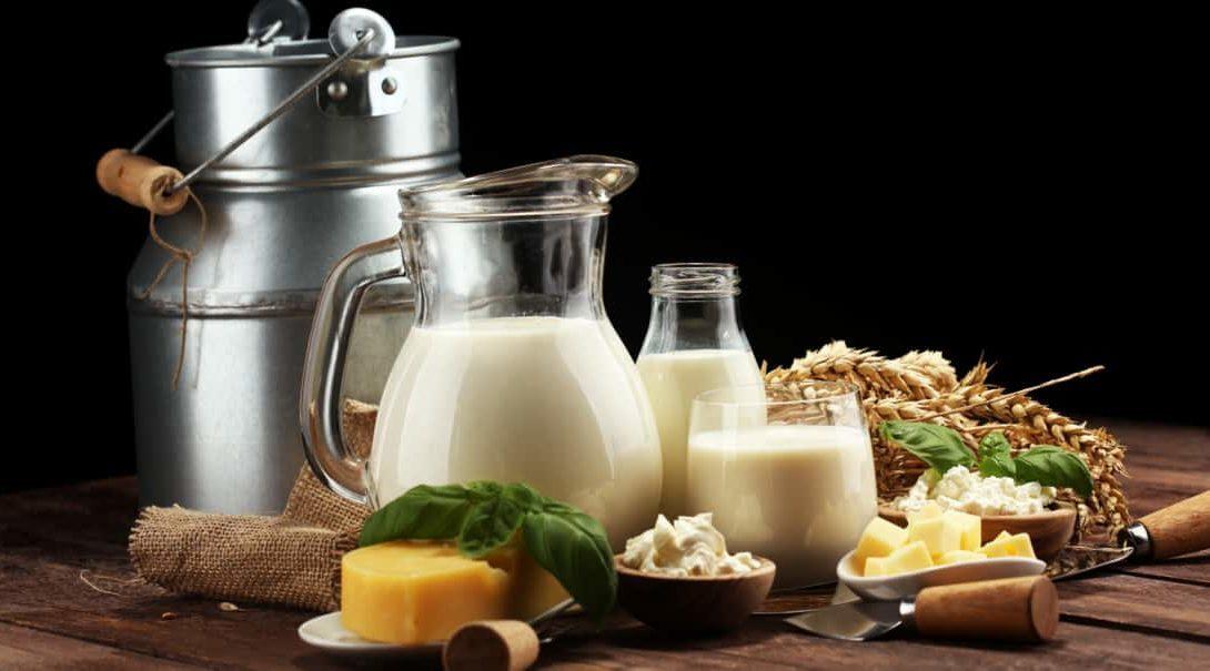 Derivados do leite: conheça os principais produtos