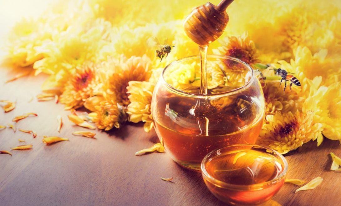As abelhas e seus produtos. Conheça quais são!