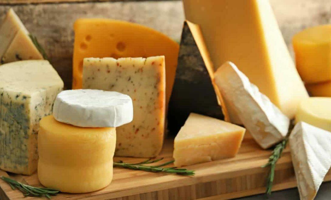 Variedade de queijos derivados do leite