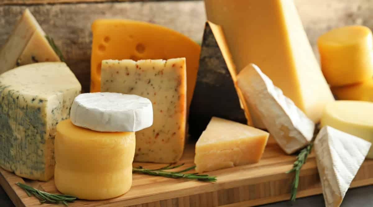 Variedades de queijos derivados do leite