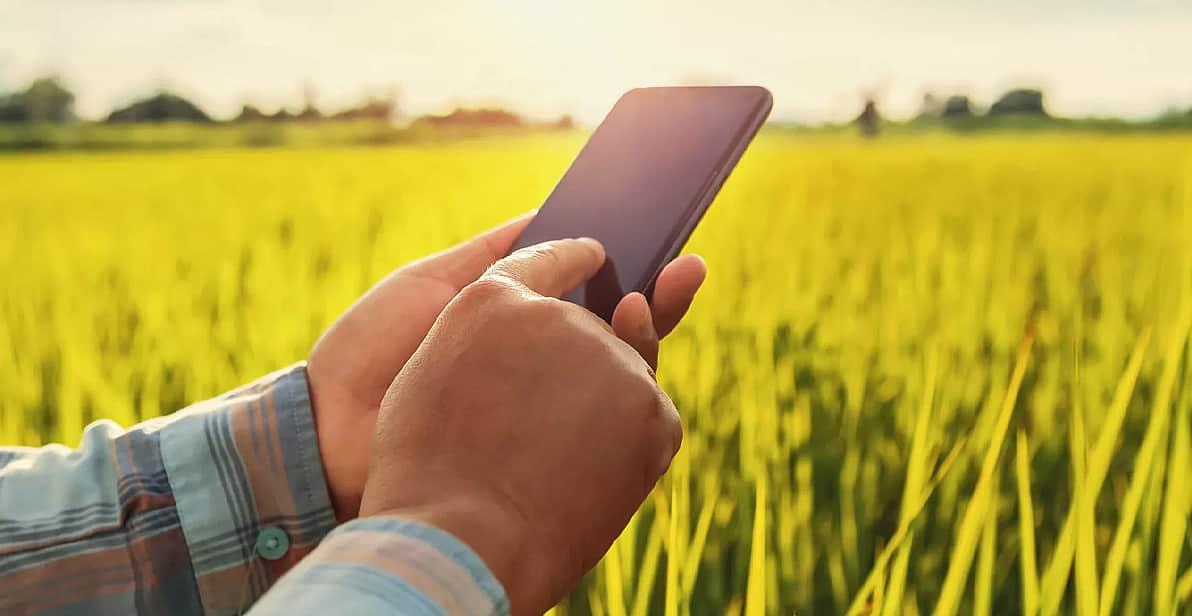 Homem utiliza celular no meio da lavoura