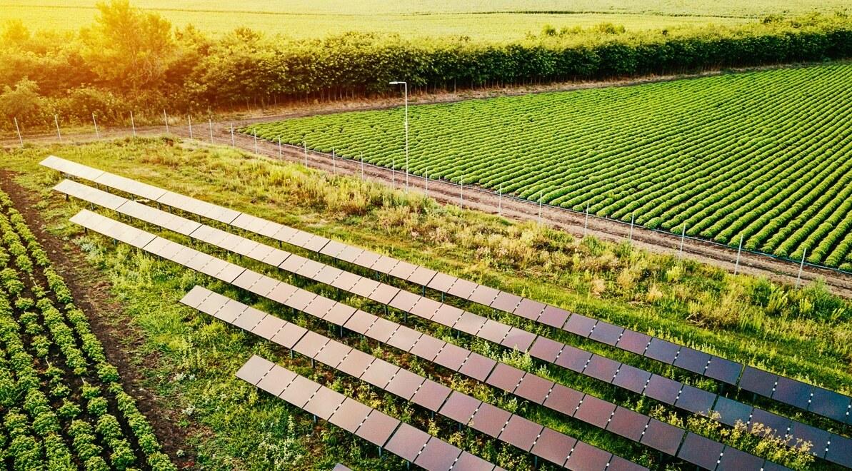 Fazenda com sistema de energia solar