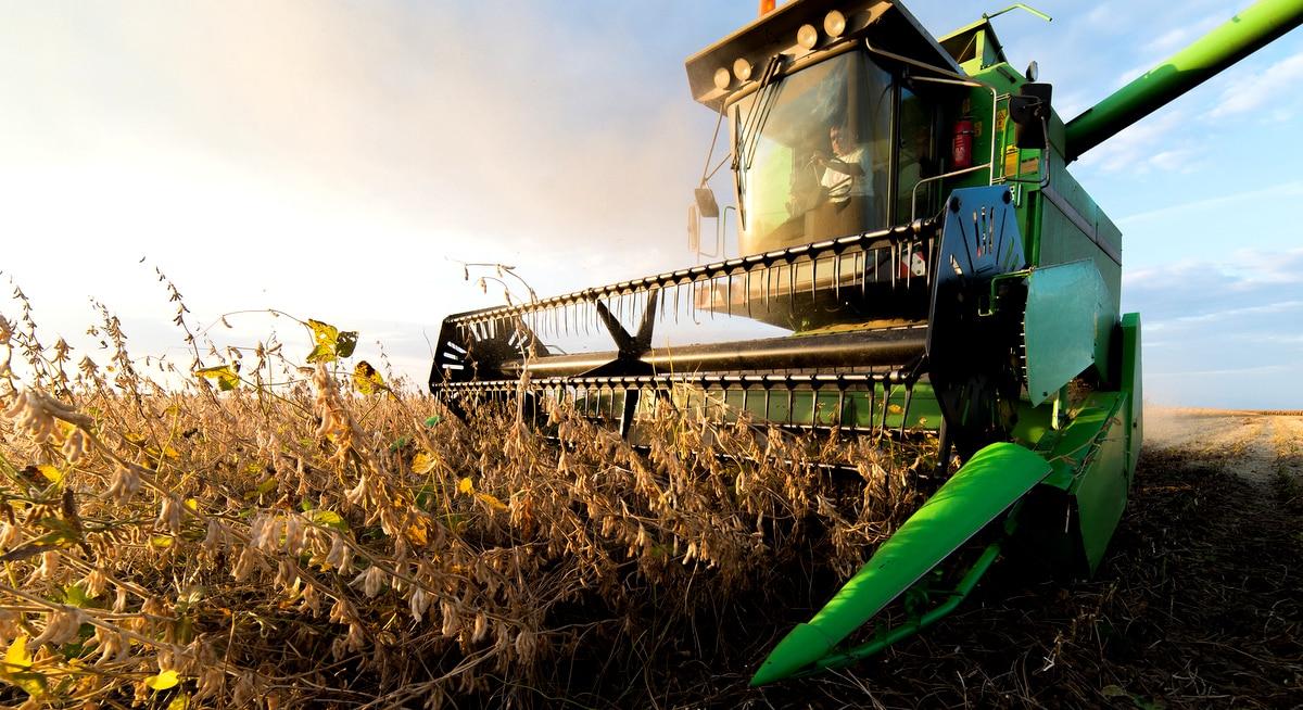 Colheita de soja e a preocupação com o armazenamento