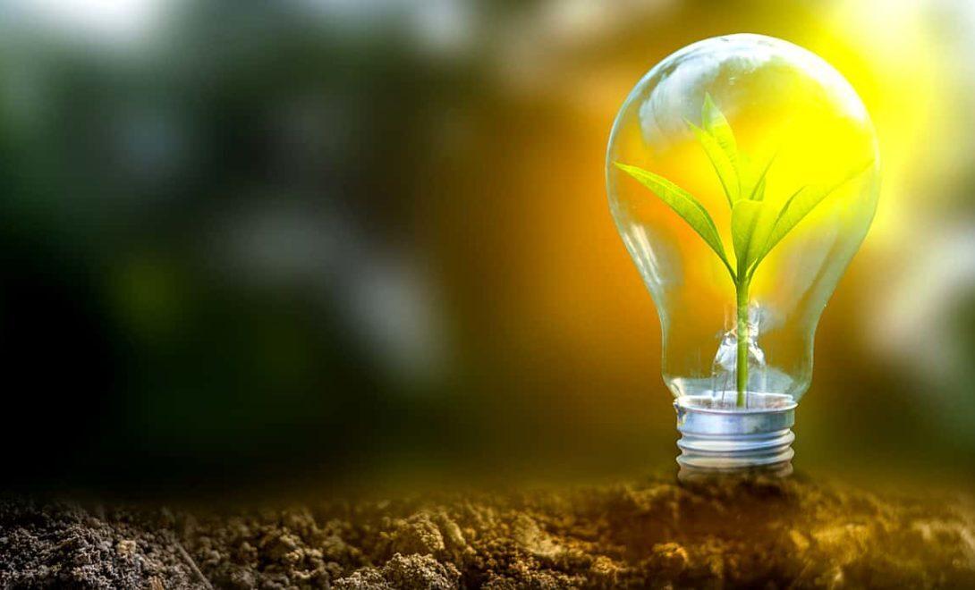 Sustentabilidade e Agronegócio