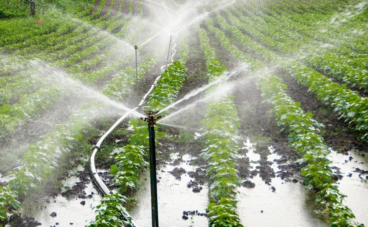 Água desperdício nas lavouras