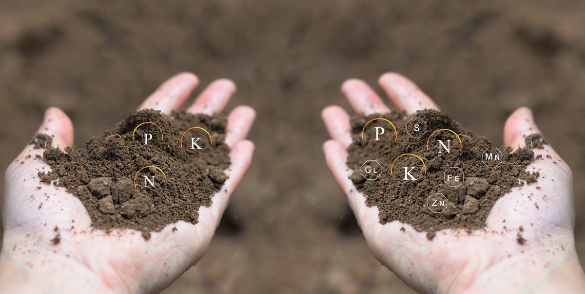 Diferentes tipos de solo para cultivo