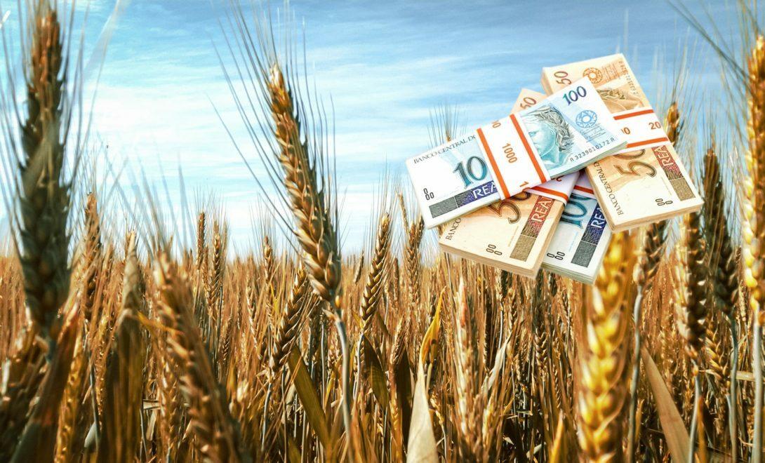 O malefício dos subsídios ao agronegócio