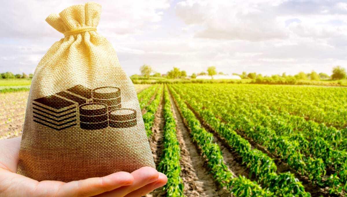 Subsídios na agricultura comparação mundial