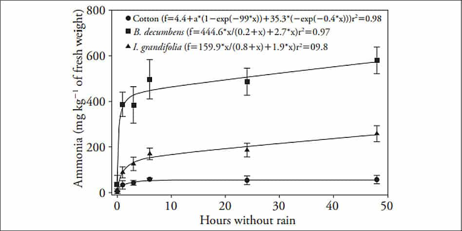 Concentração de amônio em plantas