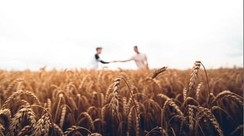 Comunicação e agronegócio entre dois produtores